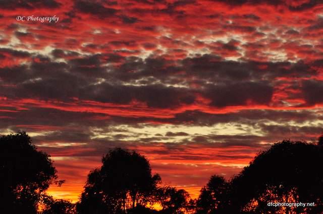 sunset_0206