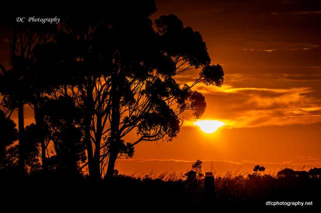sunset_0805