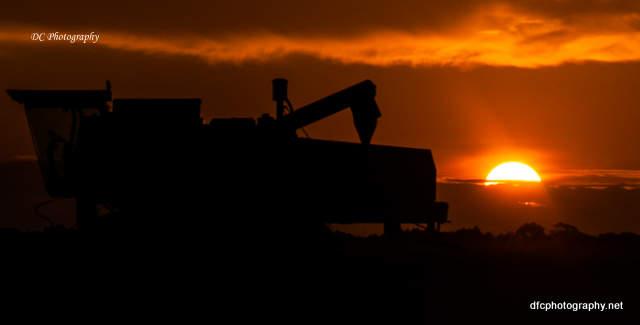sunset_0819