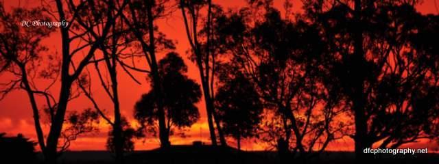 sunset_0919