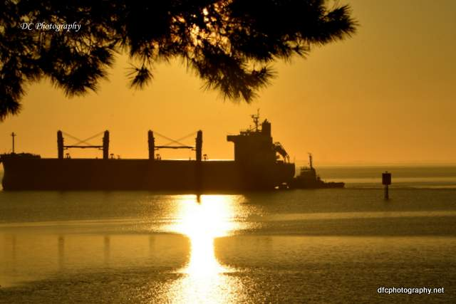 sunrise_corio_bay_6999