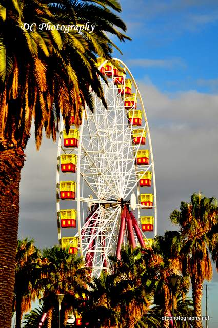 ferris_wheel_geelong_0241