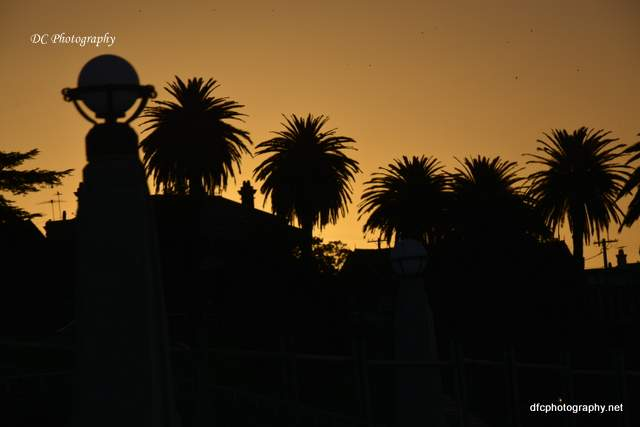 sunset_geelong_4883