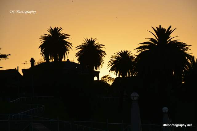 sunset_geelong_4891