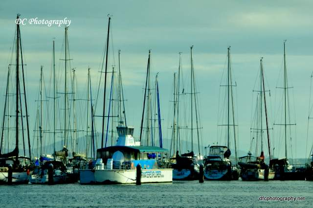yacht_club_geelong_0250