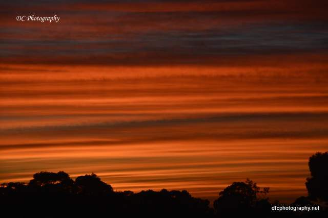 sunrise-geelong_4930