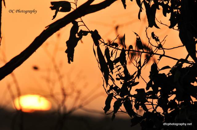 sunset-2_1_0187