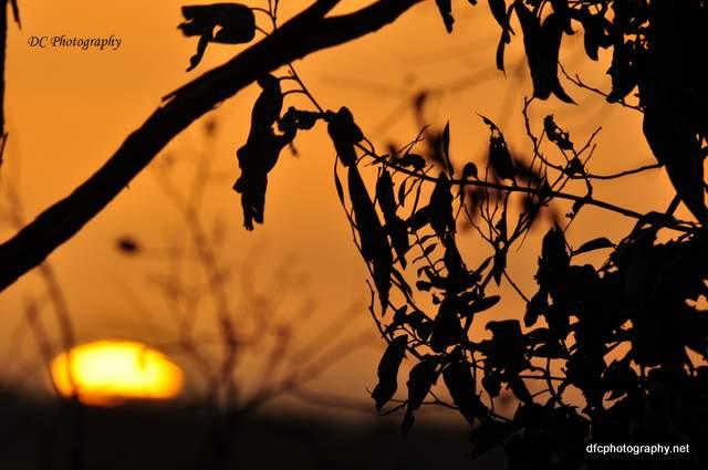 sunset-3_0_0187