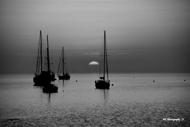 Sunrise-Corio-Bay-BW_3727